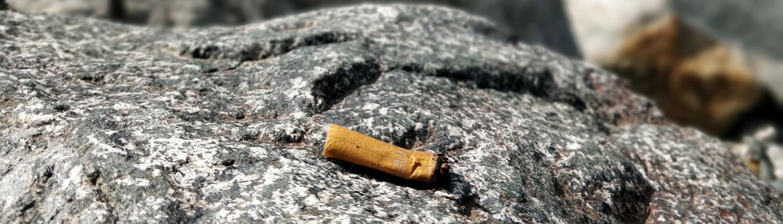 Warum Zigarettenstummeln so giftig sind
